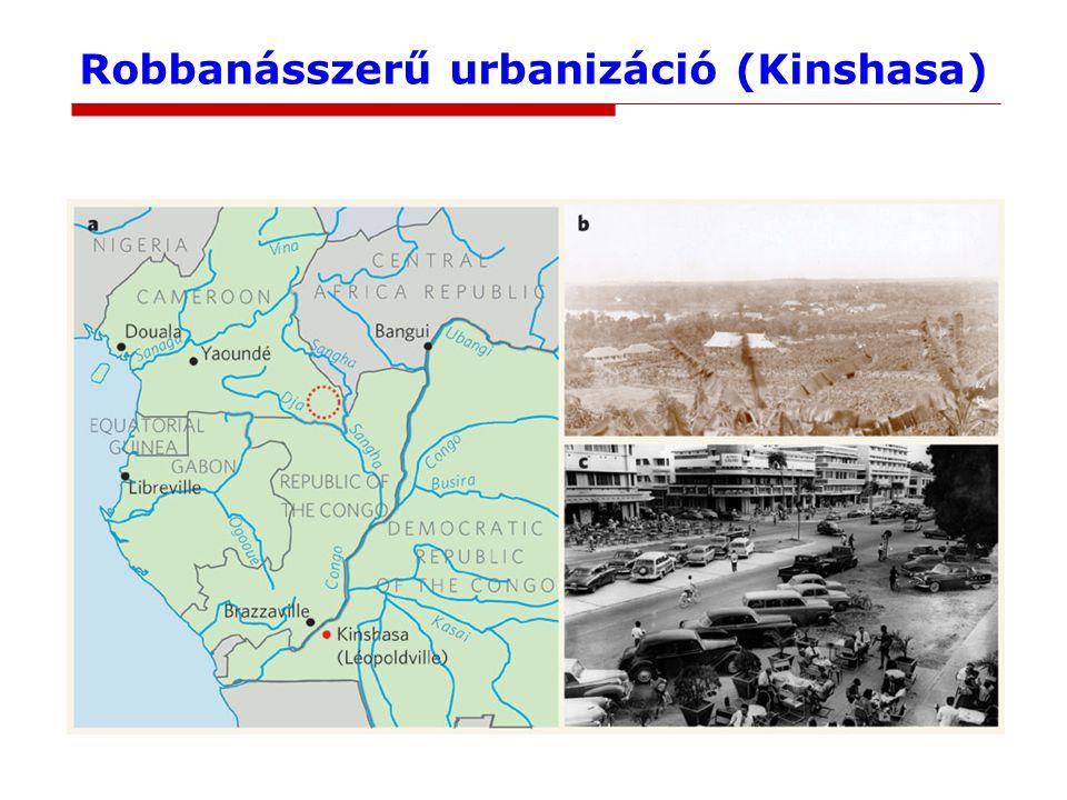 Robbanásszerű urbanizáció (Kinshasa)