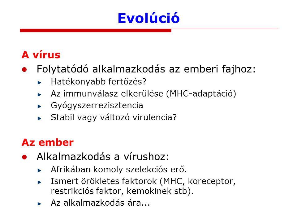 Evolúció A vírus Folytatódó alkalmazkodás az emberi fajhoz: Hatékonyabb fertőzés.