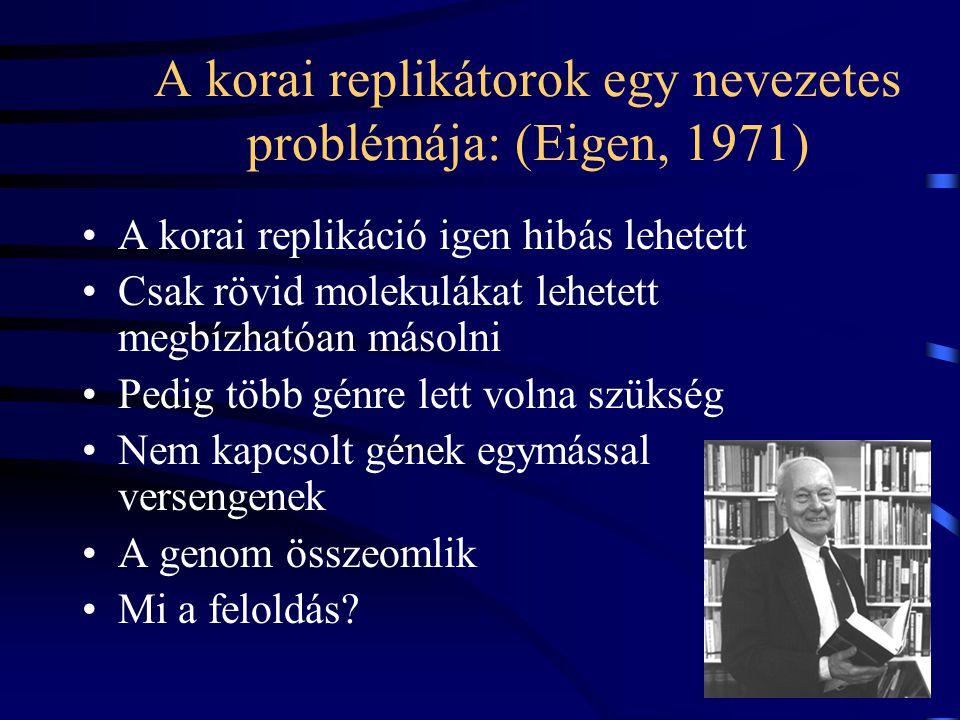 A korai replikátorok egy nevezetes problémája: (Eigen, 1971) A korai replikáció igen hibás lehetett Csak rövid molekulákat lehetett megbízhatóan másolni Pedig több génre lett volna szükség Nem kapcsolt gének egymással versengenek A genom összeomlik Mi a feloldás?