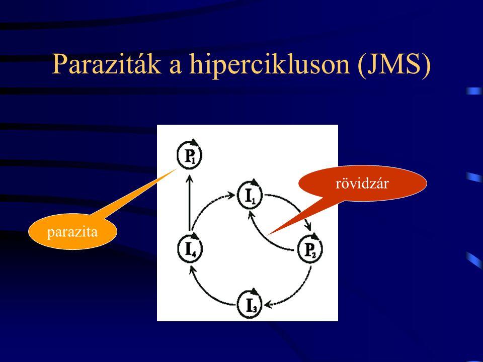 Paraziták a hipercikluson (JMS) parazita rövidzár