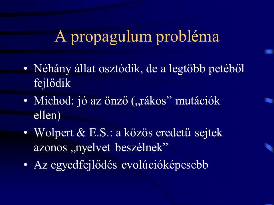 """A propagulum probléma Néhány állat osztódik, de a legtöbb petéből fejlődik Michod: jó az önző (""""rákos mutációk ellen) Wolpert & E.S.: a közös eredetű sejtek azonos """"nyelvet beszélnek Az egyedfejlődés evolúcióképesebb"""