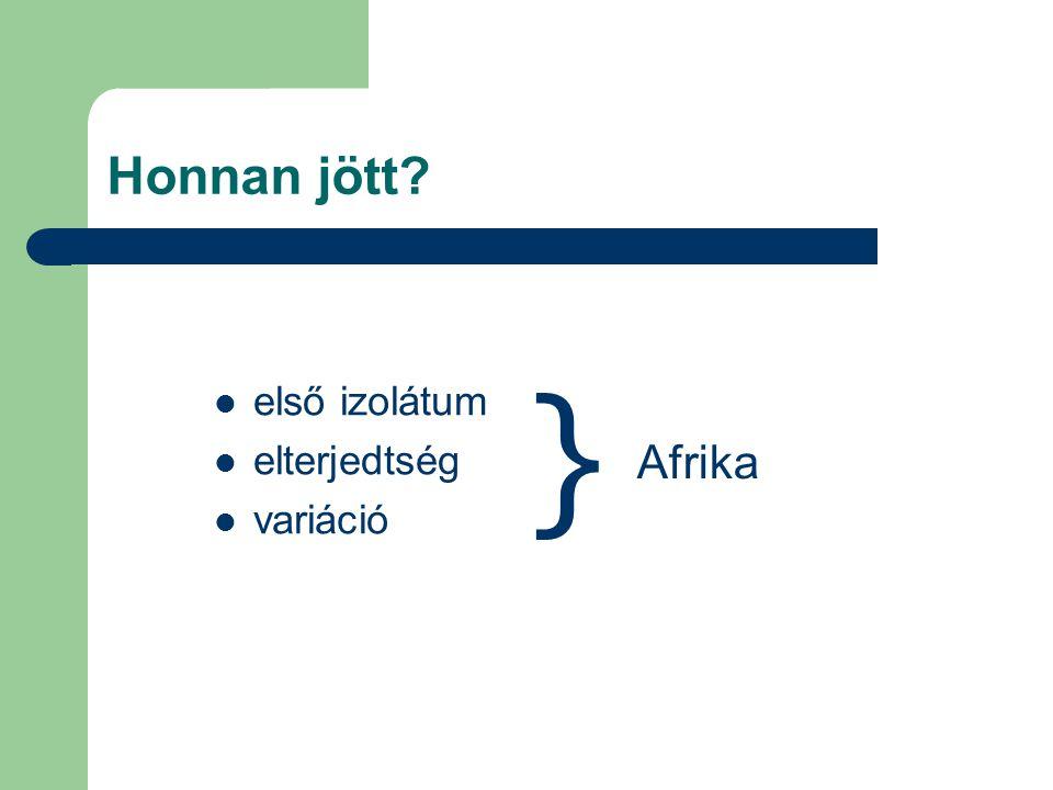 Honnan jött első izolátum elterjedtség variáció } Afrika