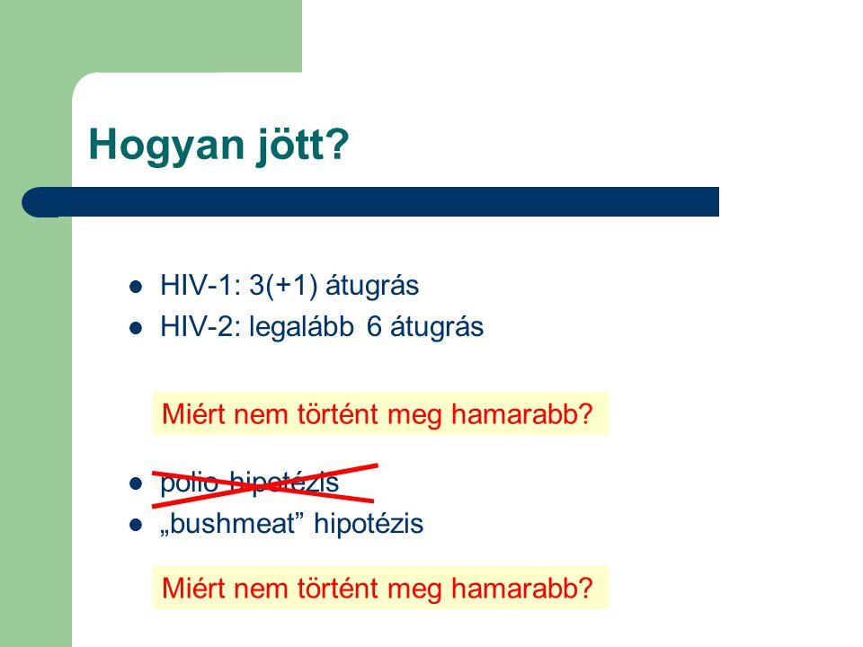 Hogyan jött. HIV-1: 3(+1) átugrás HIV-2: legalább 6 átugrás Miért nem történt meg hamarabb.
