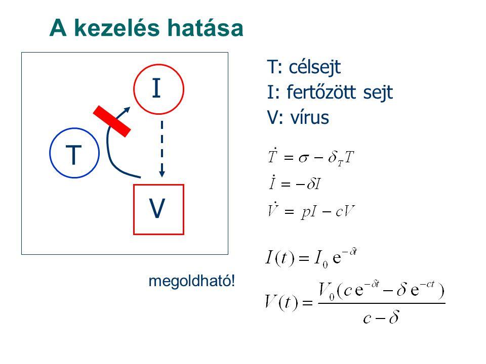 A kezelés hatása T I V T: célsejt I: fertőzött sejt V: vírus megoldható!