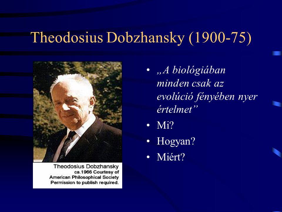 Az evolúció fényében Szathmáry Eörs Collegium Budapest ELTE