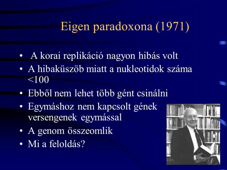 A replikátorok egy osztályozása Korlátos öröklődés Korlátlan öröklődés Holisztikusformose ModulárisVon Kiedrowski gének Korlátos(egyedek száma) > (típ