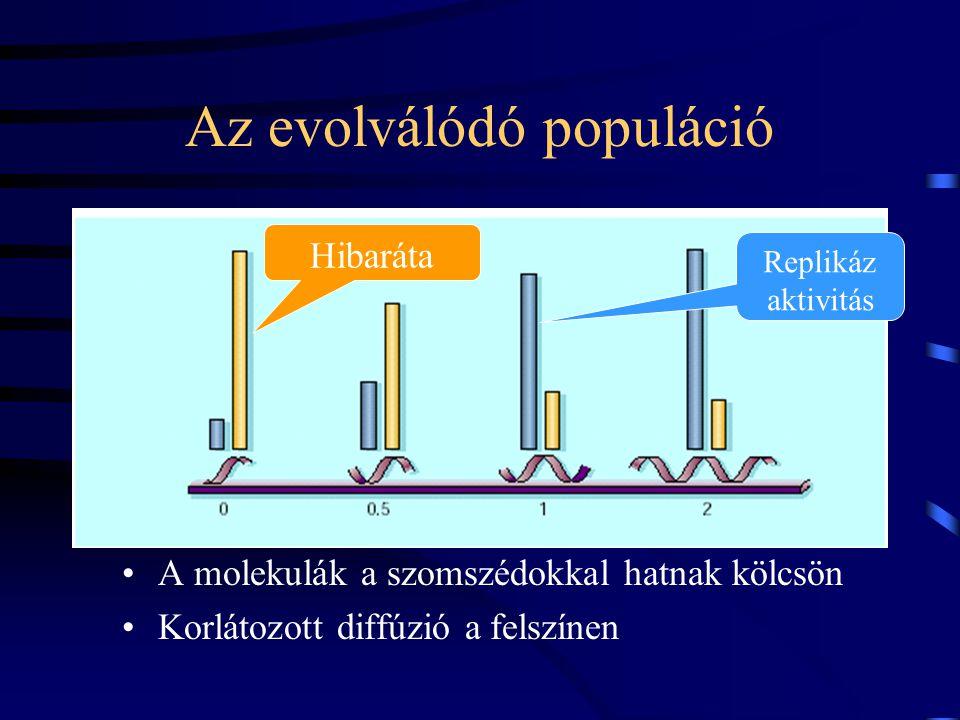 A hatékonyság növekedése Cél-hatékonyság: mennyire fogadja el a segítséget Replikáz hatékonyság: mennyire ad segítséget Másolási hűség Antagonisztikus