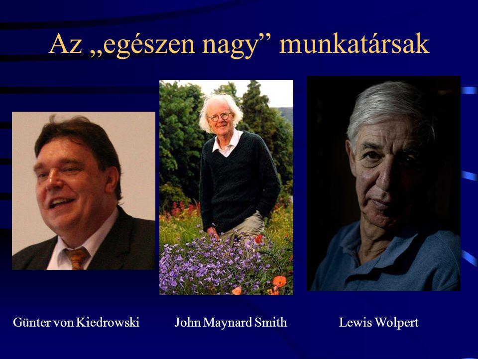 Egyetemi tanáraim Vida Gábor Zboray Géza Károlyházy Frigyes Juhász-Nagy Pál Koch SándorGánti Tibor