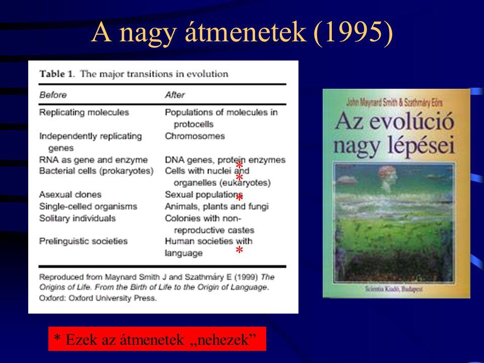 Nature 420, 360-363 (2002). Replikáz RNS Más RNS