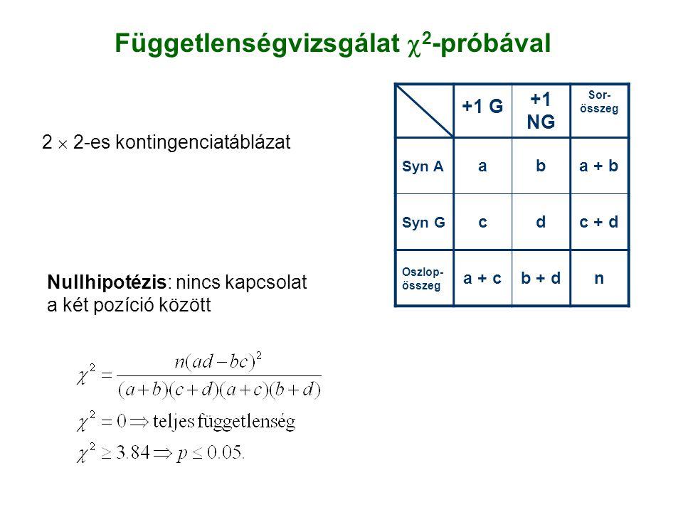+1 G +1 NG Sor- összeg Syn A aba + b Syn G cdc + d Oszlop- összeg a + cb + dn Függetlenségvizsgálat  2 -próbával Nullhipotézis: nincs kapcsolat a két pozíció között 2  2-es kontingenciatáblázat