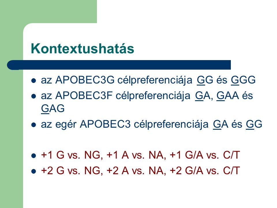Kontextushatás az APOBEC3G célpreferenciája GG és GGG az APOBEC3F célpreferenciája GA, GAA és GAG az egér APOBEC3 célpreferenciája GA és GG +1 G vs. N