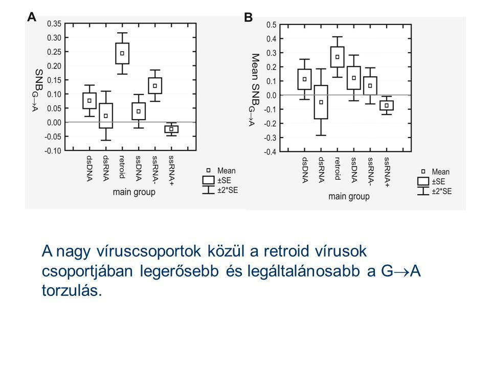 A nagy víruscsoportok közül a retroid vírusok csoportjában legerősebb és legáltalánosabb a G  A torzulás.