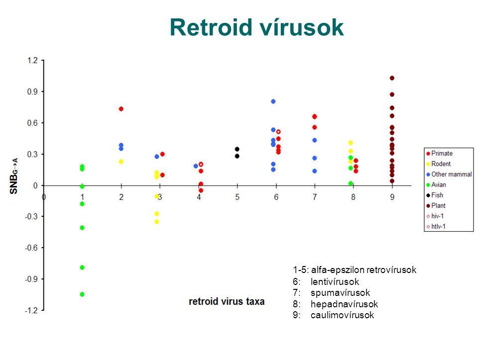 Retroid vírusok 1-5: alfa-epszilon retrovírusok 6: lentivírusok 7: spumavírusok 8: hepadnavírusok 9: caulimovírusok