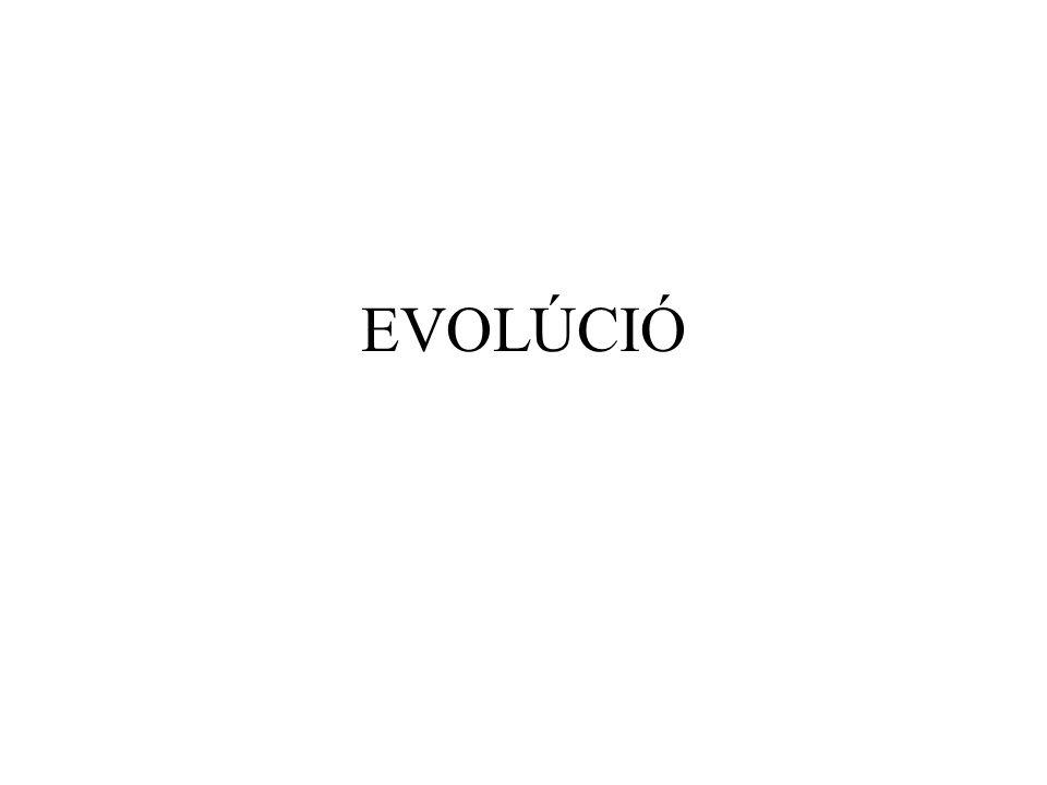 NEUTRÁLIS EVOLÚCIÓ Az evolúció az egymást követő populációk összetételének változása.