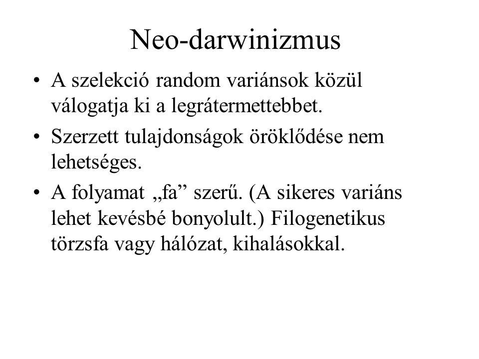 """Neo-darwinizmus A szelekció random variánsok közül válogatja ki a legrátermettebbet. Szerzett tulajdonságok öröklődése nem lehetséges. A folyamat """"fa"""""""