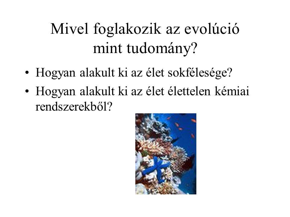 AZ EVOLÚCIÓ NÉHÁNY BIZONYÍTÉKA Kövületek