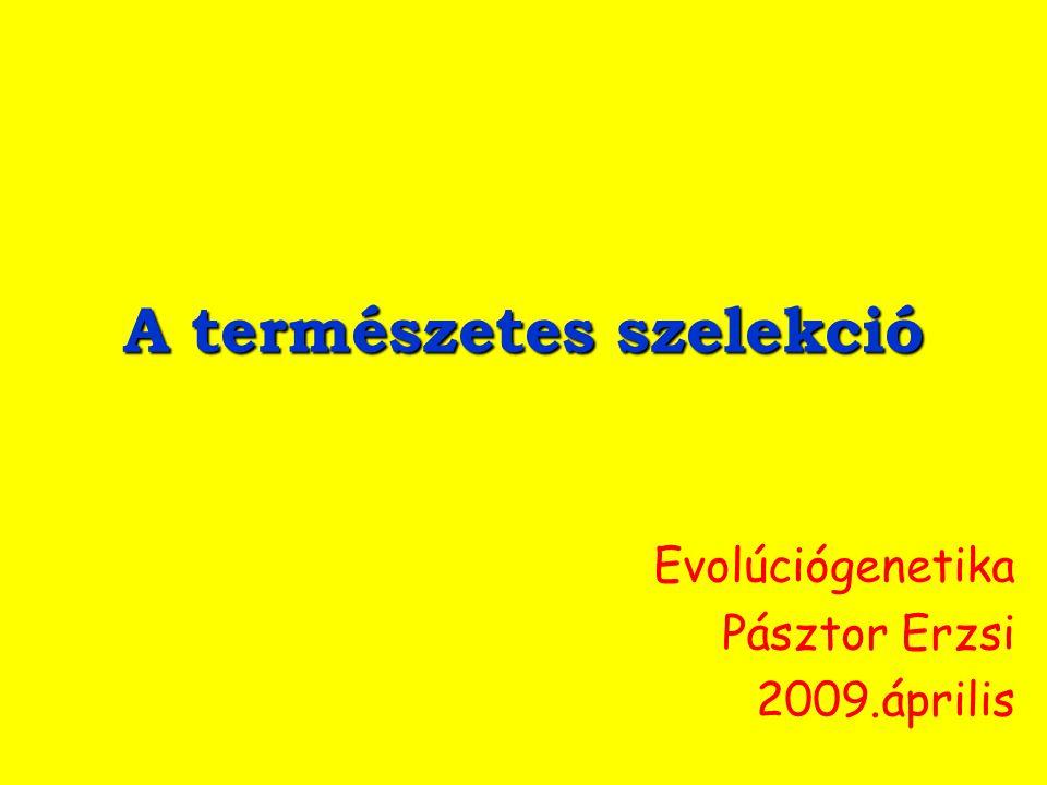 A természetes szelekció Evolúciógenetika Pásztor Erzsi 2009.április