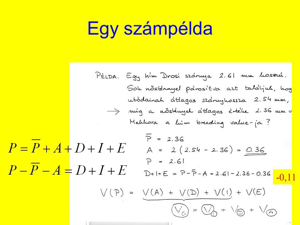 Örökölhetőség, heritabilitás h 2 = V(A)/V(P) Szűkebb értelemben vett heritabilitás: