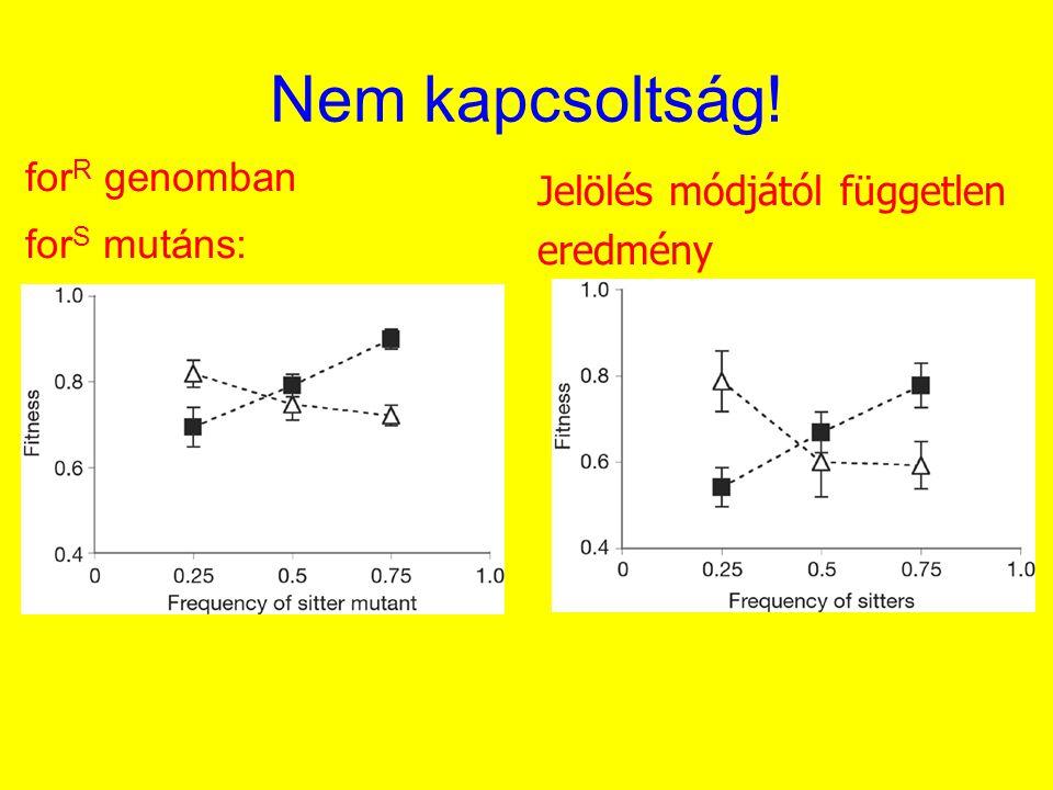 Nem kapcsoltság! for R genomban for S mutáns: Jelölés módjától független eredmény