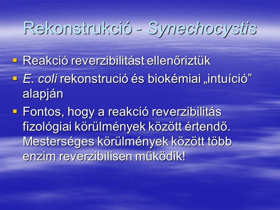 """Rekonstrukció - Synechocystis  Reakció reverzibilitást ellenőriztük  E. coli rekonstrució és biokémiai """"intuíció"""" alapján  Fontos, hogy a reakció r"""