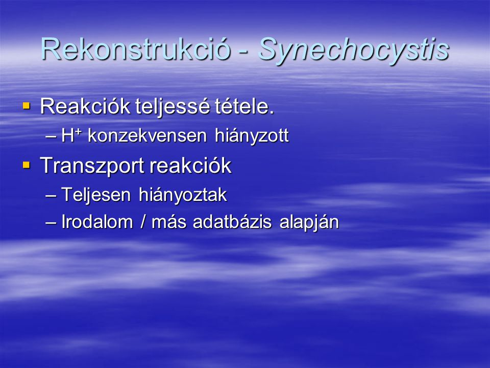 Rekonstrukció - Synechocystis  Reakciók teljessé tétele. –H + konzekvensen hiányzott  Transzport reakciók –Teljesen hiányoztak –Irodalom / más adatb