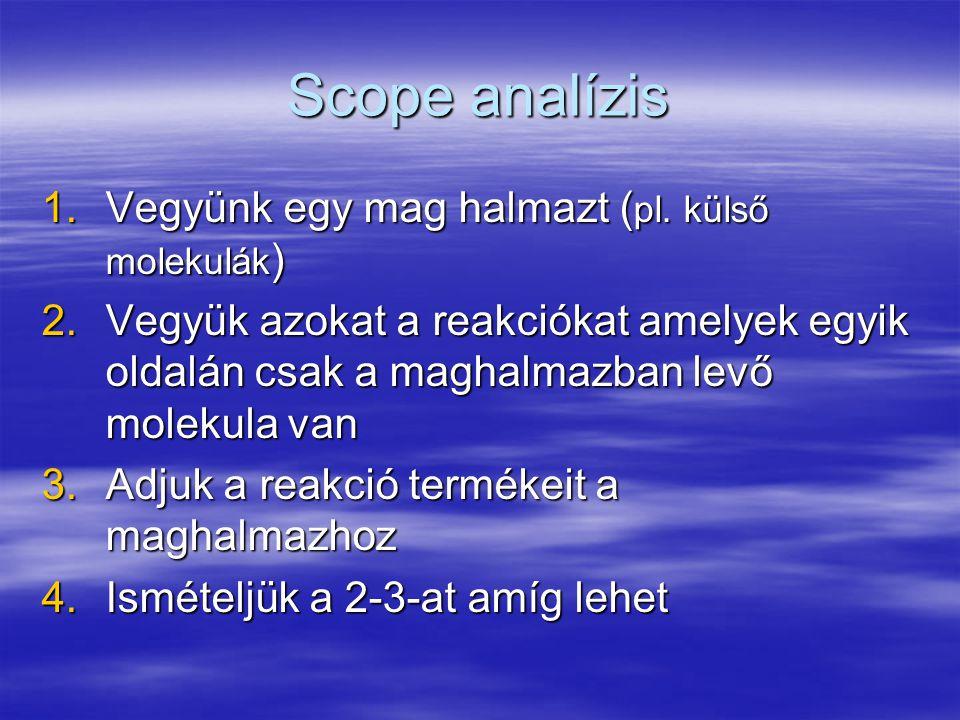 Scope analízis 1.Vegyünk egy mag halmazt ( pl. külső molekulák ) 2.Vegyük azokat a reakciókat amelyek egyik oldalán csak a maghalmazban levő molekula
