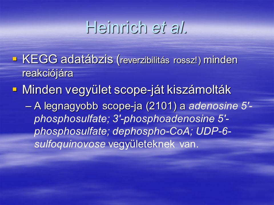 Heinrich et al.  KEGG adatábzis ( reverzibilitás rossz!) minden reakciójára  Minden vegyület scope-ját kiszámolták –A legnagyobb scope-ja (2101) a –