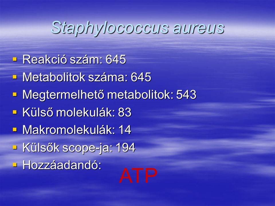Staphylococcus aureus  Reakció szám: 645  Metabolitok száma: 645  Megtermelhető metabolitok: 543  Külső molekulák: 83  Makromolekulák: 14  Külső