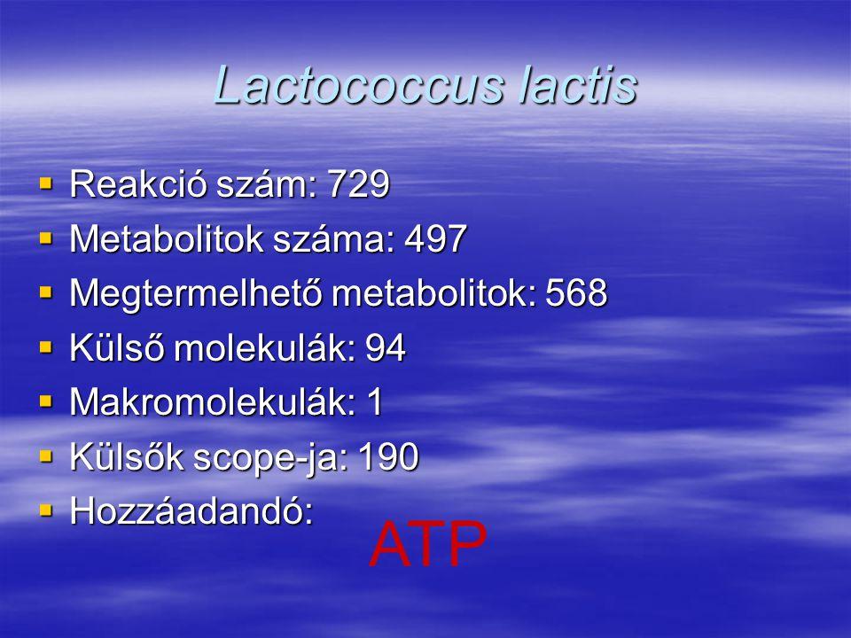 Lactococcus lactis  Reakció szám: 729  Metabolitok száma: 497  Megtermelhető metabolitok: 568  Külső molekulák: 94  Makromolekulák: 1  Külsők sc