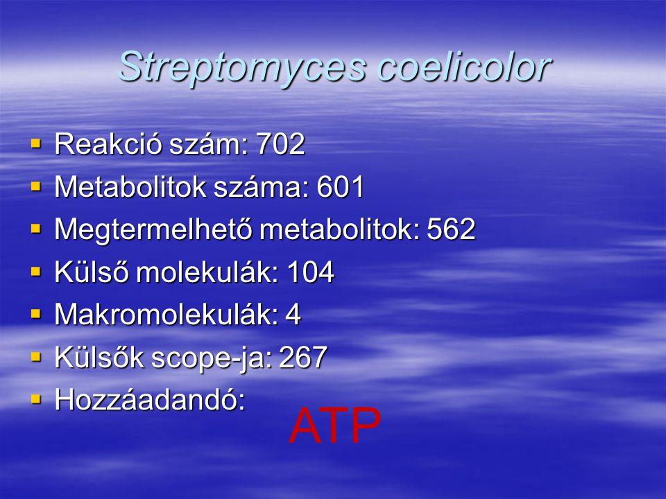 Streptomyces coelicolor  Reakció szám: 702  Metabolitok száma: 601  Megtermelhető metabolitok: 562  Külső molekulák: 104  Makromolekulák: 4  Kül