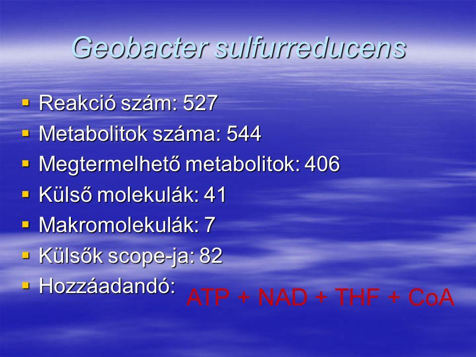 Geobacter sulfurreducens  Reakció szám: 527  Metabolitok száma: 544  Megtermelhető metabolitok: 406  Külső molekulák: 41  Makromolekulák: 7  Kül