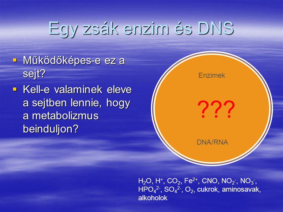 Egy zsák enzim és DNS  Működőképes-e ez a sejt?  Kell-e valaminek eleve a sejtben lennie, hogy a metabolizmus beinduljon? Enzimek DNA/RNA ??? H 2 O,