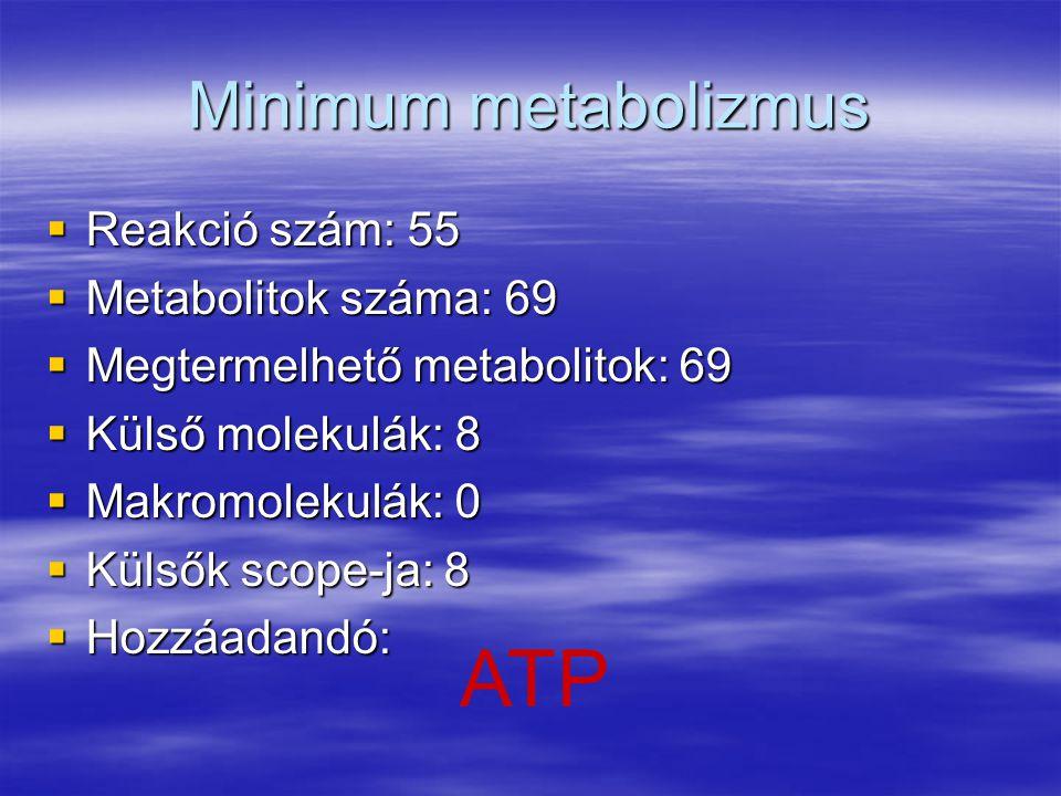 Minimum metabolizmus  Reakció szám: 55  Metabolitok száma: 69  Megtermelhető metabolitok: 69  Külső molekulák: 8  Makromolekulák: 0  Külsők scop