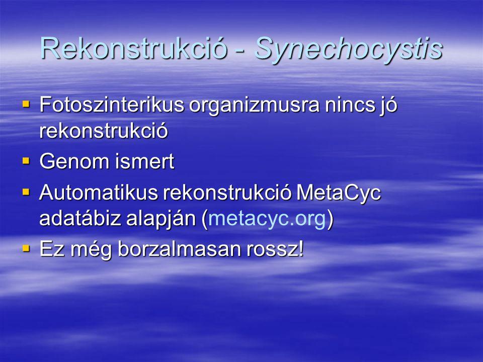 Rekonstrukció - Synechocystis  Fotoszinterikus organizmusra nincs jó rekonstrukció  Genom ismert  Automatikus rekonstrukció MetaCyc adatábiz alapjá