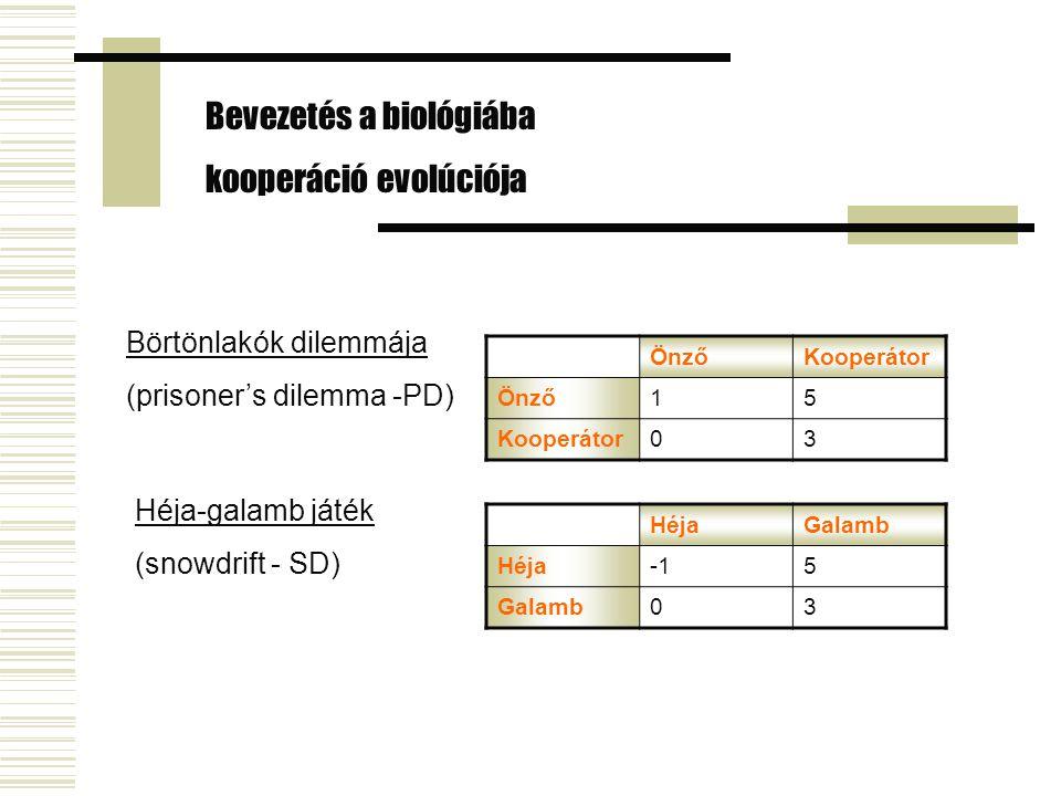 Bevezetés a biológiába kooperáció evolúciója Börtönlakók dilemmája (prisoner's dilemma -PD) ÖnzőKooperátor Önző15 Kooperátor03 Héja-galamb játék (snowdrift - SD) HéjaGalamb Héja5 Galamb03