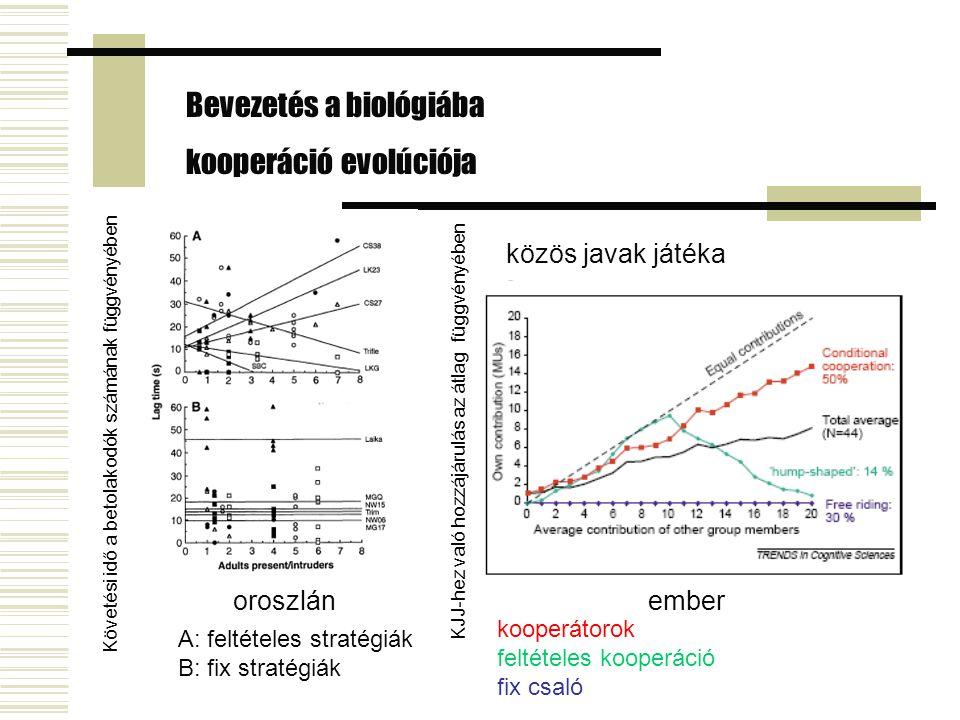 közös javak játéka emberoroszlán Bevezetés a biológiába kooperáció evolúciója Követési idő a betolakodók számának függvényében A: feltételes stratégiák B: fix stratégiák kooperátorok feltételes kooperáció fix csaló KJJ-hez való hozzájárulás az átlag függvényében