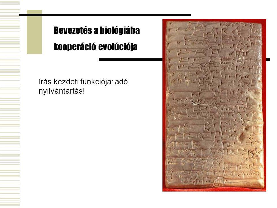 írás kezdeti funkciója: adó nyilvántartás! Bevezetés a biológiába kooperáció evolúciója