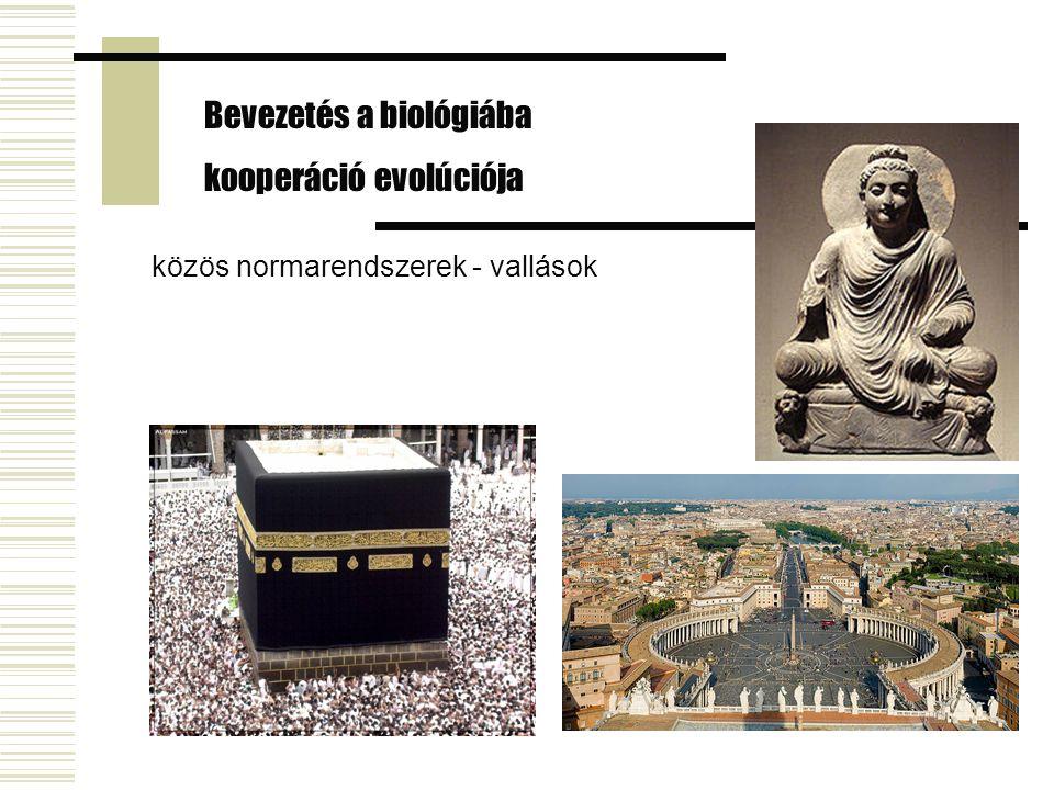 közös normarendszerek - vallások Bevezetés a biológiába kooperáció evolúciója