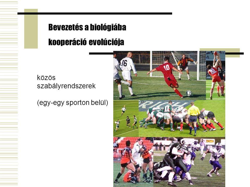 Bevezetés a biológiába kooperáció evolúciója közös szabályrendszerek (egy-egy sporton belül)