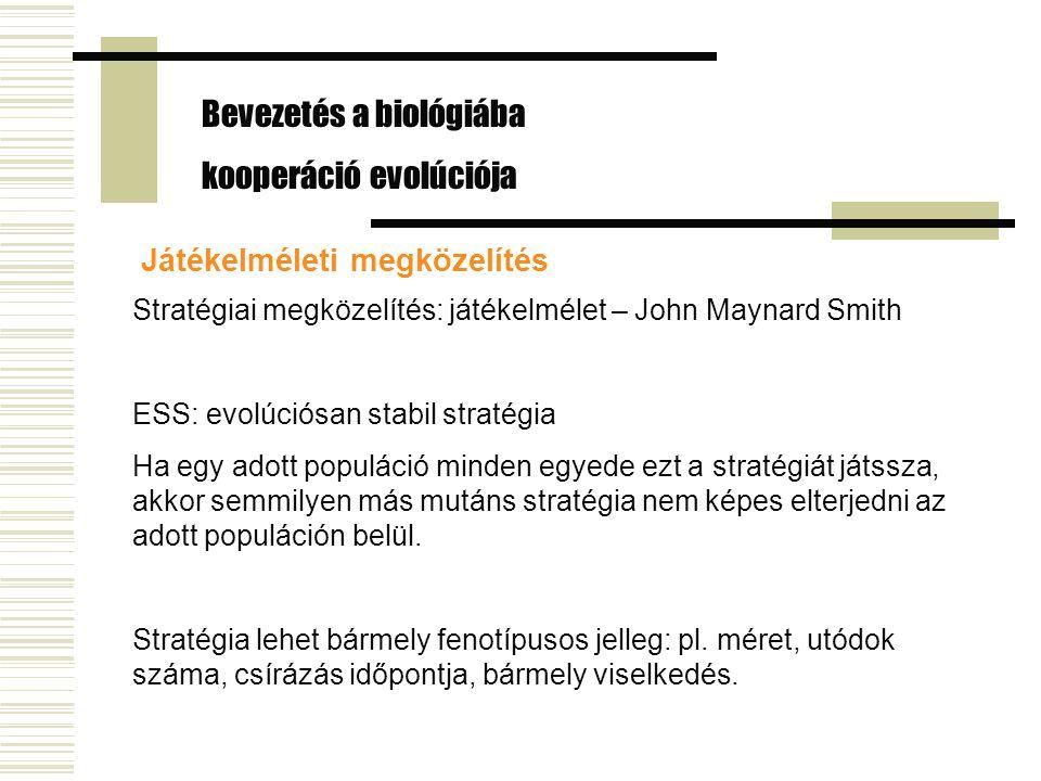 Játékelméleti megközelítés Stratégiai megközelítés: játékelmélet – John Maynard Smith ESS: evolúciósan stabil stratégia Ha egy adott populáció minden egyede ezt a stratégiát játssza, akkor semmilyen más mutáns stratégia nem képes elterjedni az adott populáción belül.