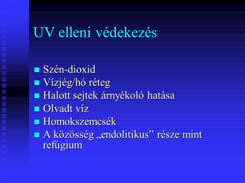 """UV elleni védekezés Szén-dioxid Szén-dioxid Vízjég/hó réteg Vízjég/hó réteg Halott sejtek árnyékoló hatása Halott sejtek árnyékoló hatása Olvadt víz Olvadt víz Homokszemcsék Homokszemcsék A közösség """"endolitikus része mint refúgium A közösség """"endolitikus része mint refúgium"""