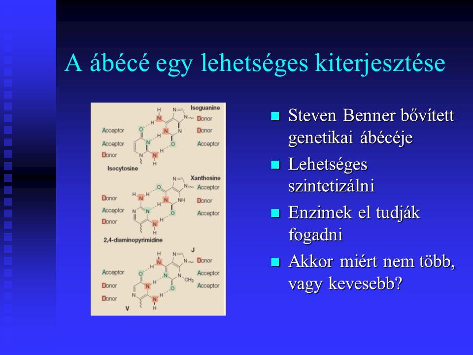 A ábécé egy lehetséges kiterjesztése Steven Benner bővített genetikai ábécéje Lehetséges szintetizálni Enzimek el tudják fogadni Akkor miért nem több,