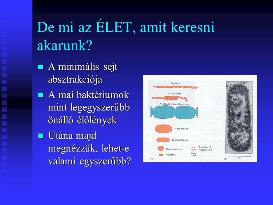 De mi az ÉLET, amit keresni akarunk? A minimális sejt absztrakciója A minimális sejt absztrakciója A mai baktériumok mint legegyszerűbb önálló élőlény