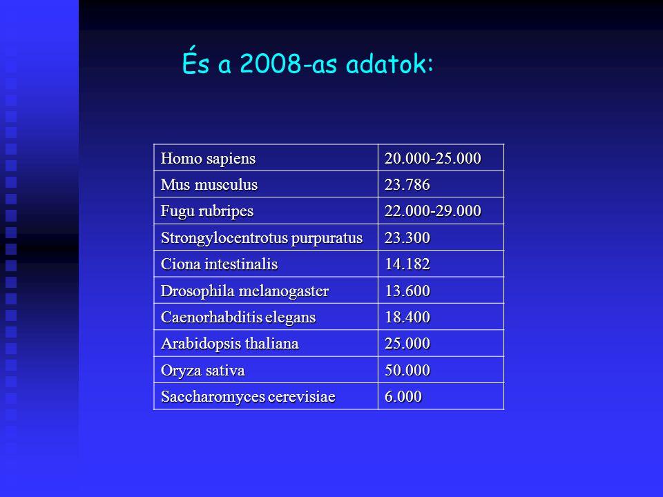 Homo sapiens 20.000-25.000 Mus musculus 23.786 Fugu rubripes 22.000-29.000 Strongylocentrotus purpuratus 23.300 Ciona intestinalis 14.182 Drosophila m