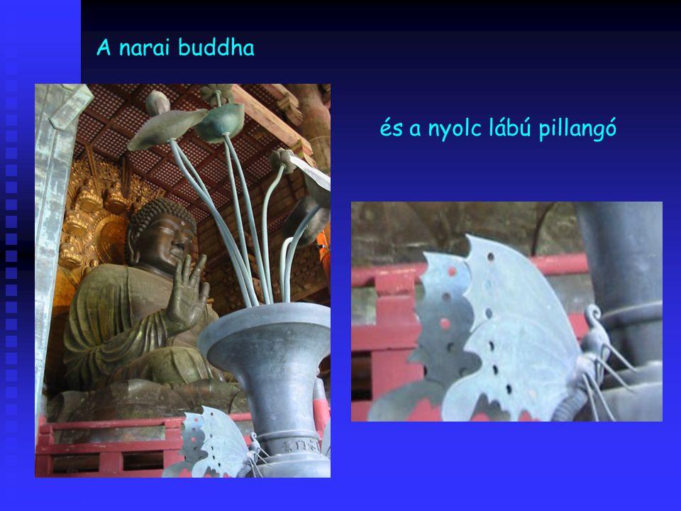 A narai buddha és a nyolc lábú pillangó