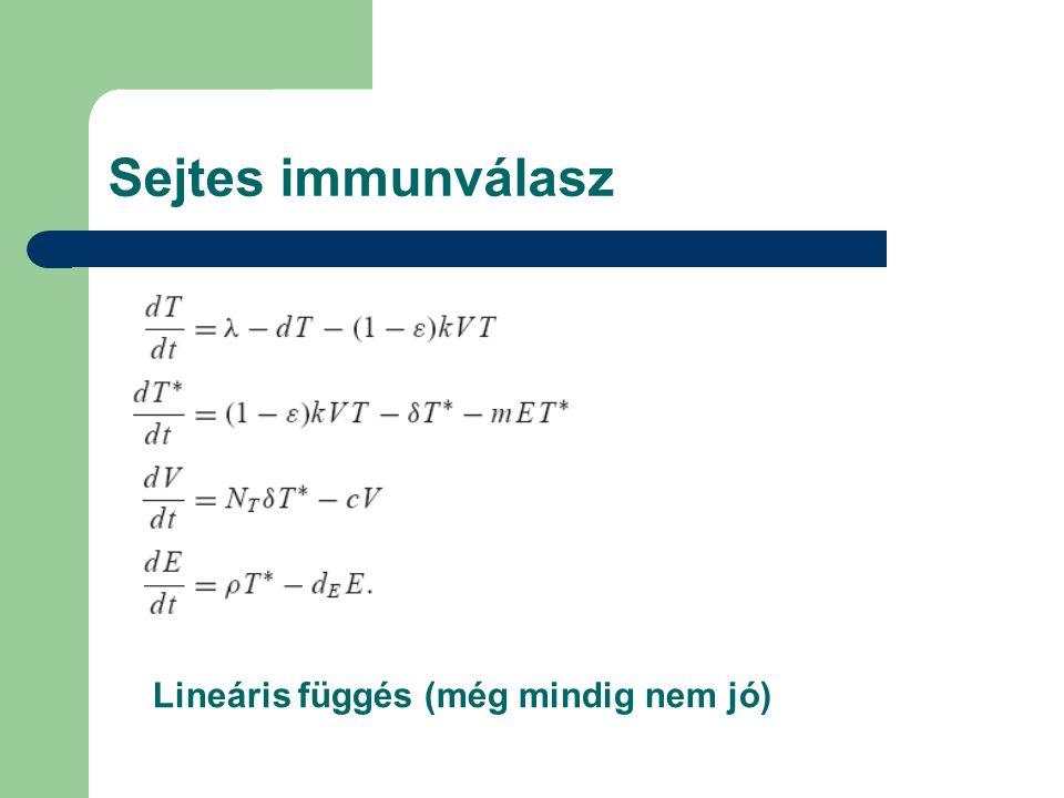 Sejtes immunválasz Lineáris függés (még mindig nem jó)