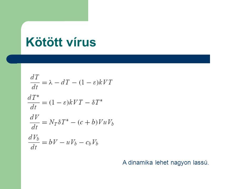 Kötött vírus A dinamika lehet nagyon lassú.