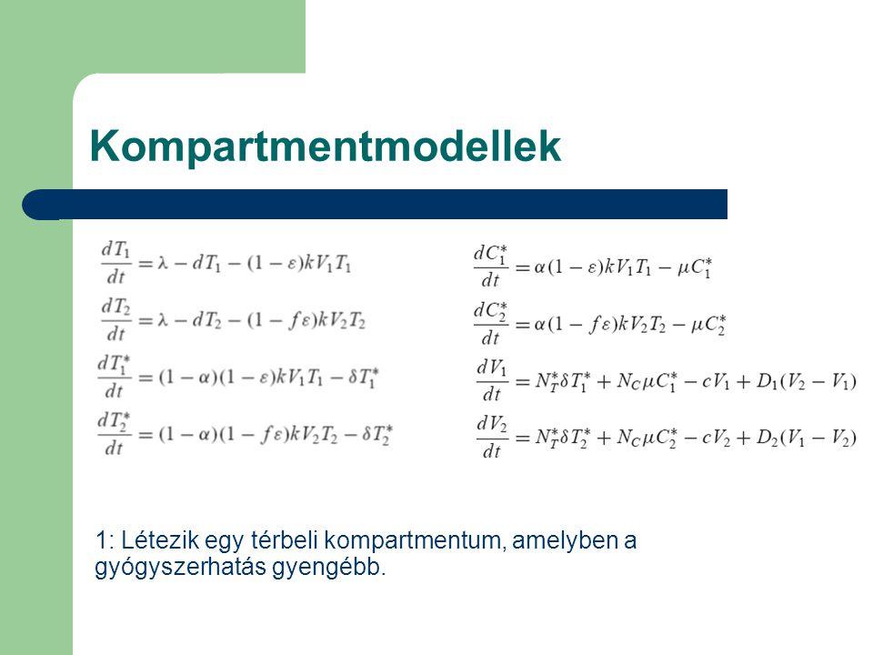 Kompartmentmodellek 1: Létezik egy térbeli kompartmentum, amelyben a gyógyszerhatás gyengébb.