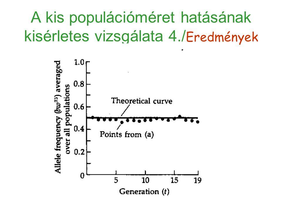 Eredmények 2.Sok, különböző mutáns esetén egyensúlyban a neutrális allélok fixálódási (lecserélődési) rátája μ., μ:a neutrális mutációk keletkezési rátája génenként és generációnként.
