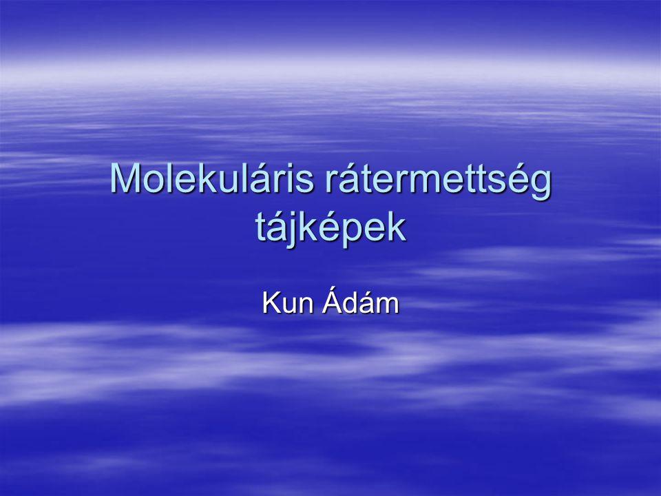 Molekuláris rátermettség tájképek Kun Ádám
